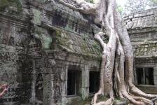angkor_temples_cambodia_12