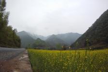 yangxian2foping
