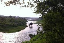chitwan_national_park_08