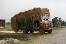 indian_trucks_03