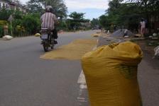 road_2_hoi_an_vietnam_05